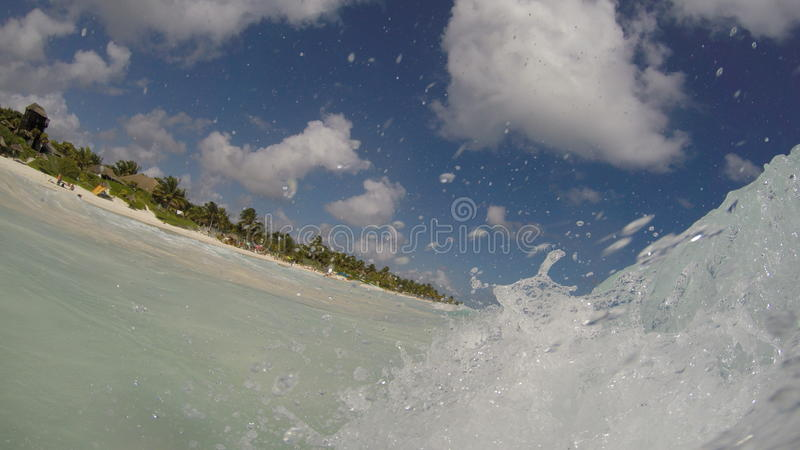 Wirkliche carbean Welle des Ola stockfotografie