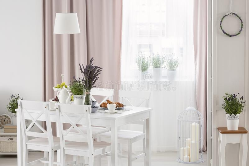 Wirkliches Foto der weißen Tabelle mit frischem Lavendel und dem Frühstück, die im hellen Esszimmerinnenraum mit Fenster mit steh stockfotos