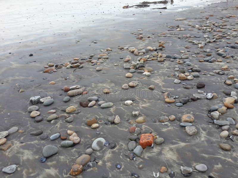 Żwirowata plaża zdjęcia stock
