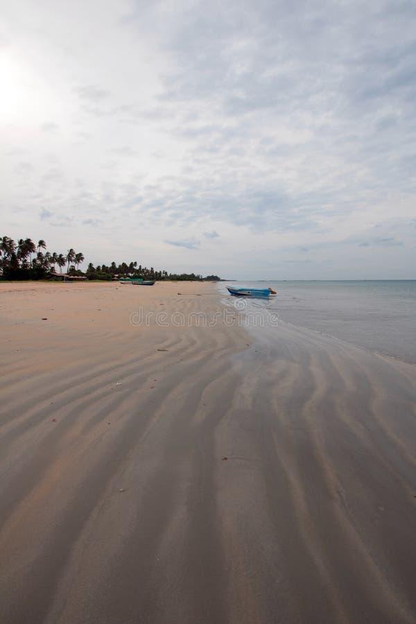 Wirujący wężowatego piasek wzory na Nilaveli Wyrzucać na brzeg w Trincomalee Sri Lanka obraz stock