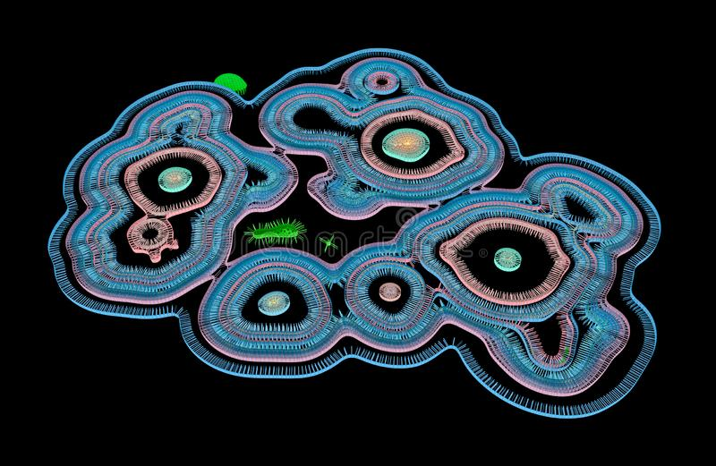 Wirus Dołączający komórki Zewnętrzna błona I Swój RNA podesłanie Wśrodku komórki royalty ilustracja