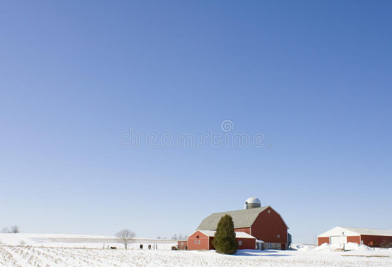 Wisconsin Dairy Farm In The Winter Royalty Free Stock Image