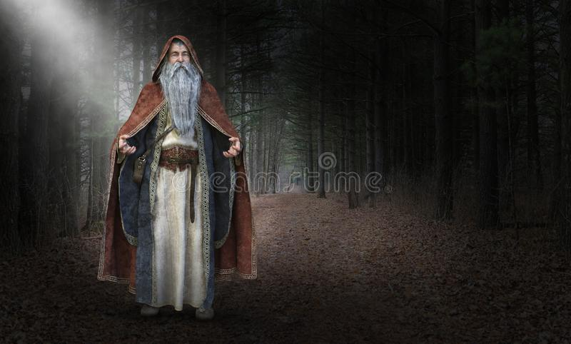 Wise Evil Wizard, Sorcerer, Magic royalty free illustration