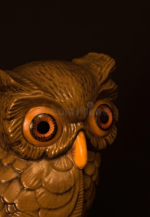 Free Wise Owl Stock Image - 22052431