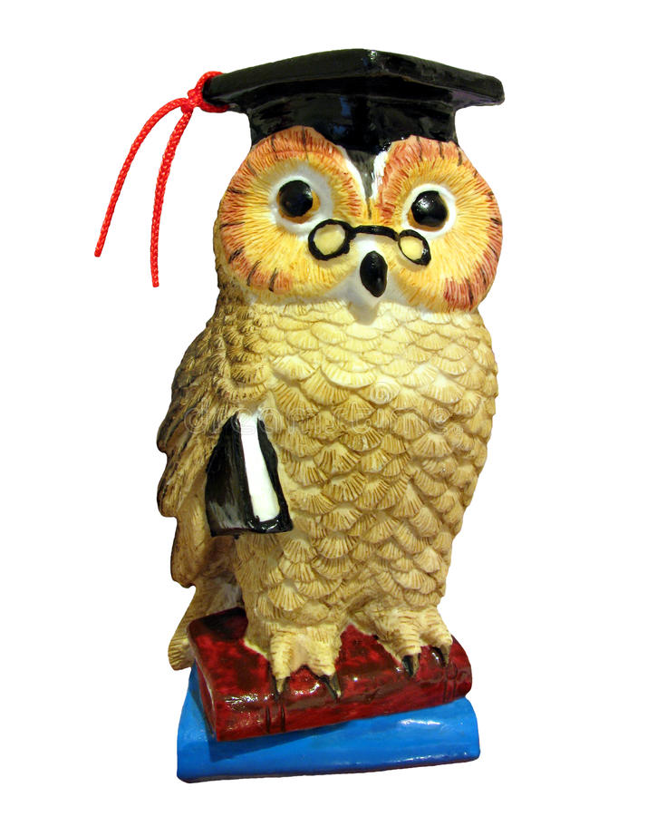 Wise owl with books. Photo of a wise old owl standing on books and wearing a mortar board hat with a book under his wing, depicting wisdom and knowledge royalty free illustration