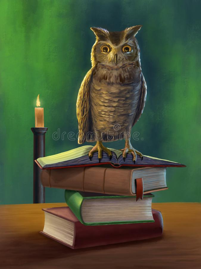 Owl and books stock illustration