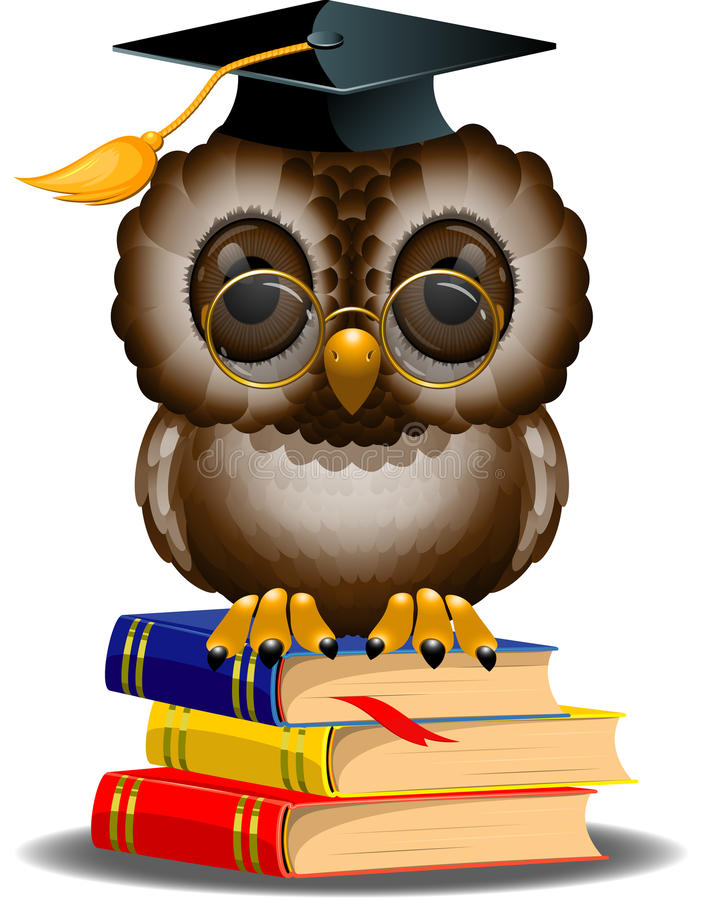 Wise owl on a stack of books vector illustration