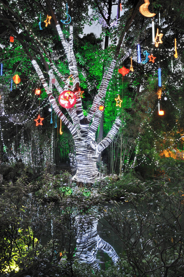 Wish Tree royalty free stock photo