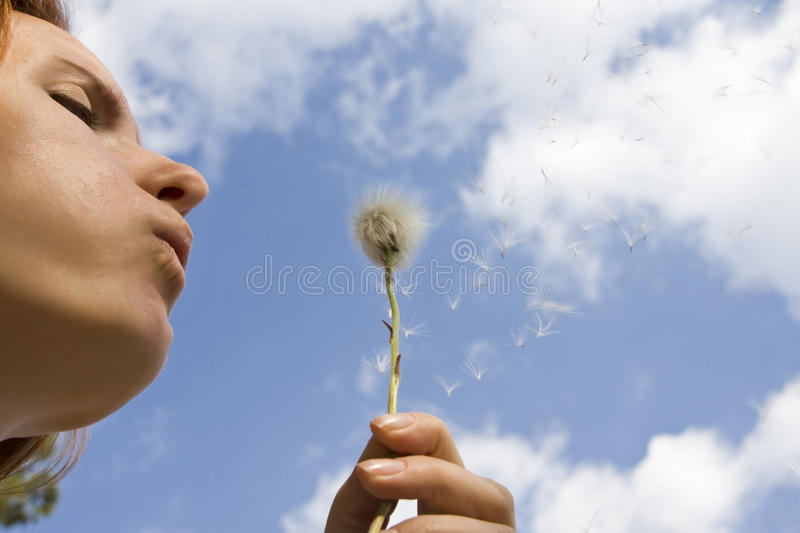 Download Wishing... stock photo. Image of hand, plant, grass, clear - 14310050