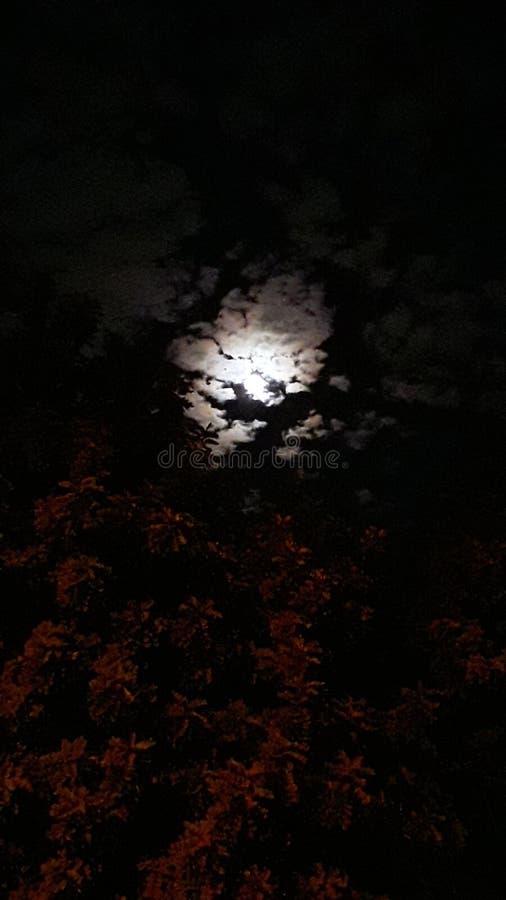 Wishing upon a moon stock image