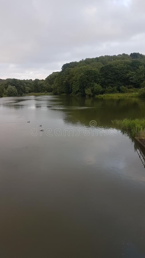 Tranquil. Wishing Tree resevoir , stress free walk with my dog royalty free stock photos
