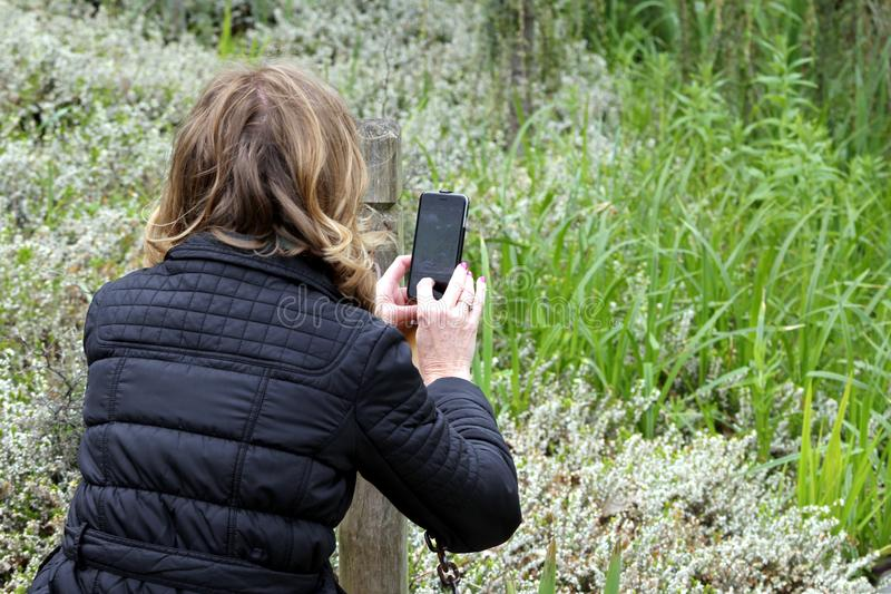 Wisley, Surrey, UK - Kwiecień 30 2017: Kobieta bierze fotografii wi fotografia stock