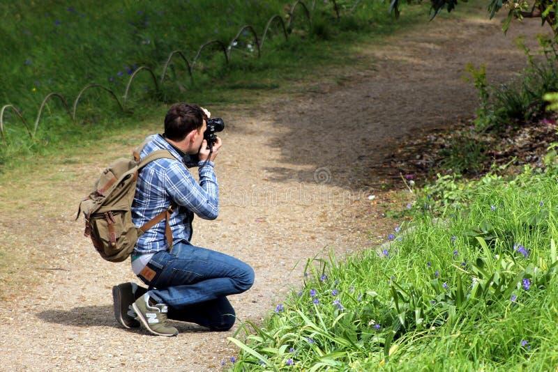 Wisley, Surrey, UK - Kwiecień 30 2017: Męski fotograf w sprawdzać zdjęcia stock