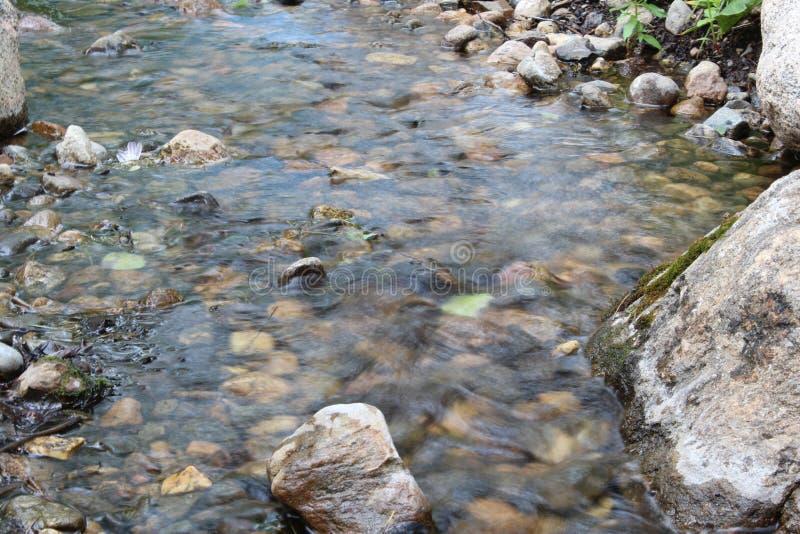 Wispy Stream royalty free stock photography