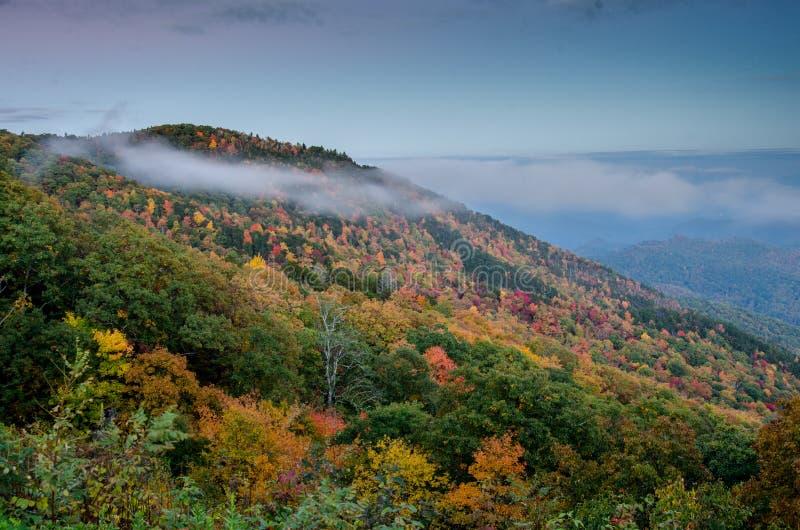 Wispy Wolken von Fall-Blättern im North Carolina lizenzfreie stockfotos