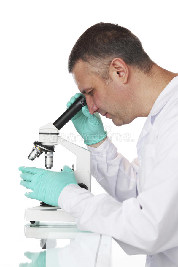 Wissenschaftler lizenzfreie stockfotos