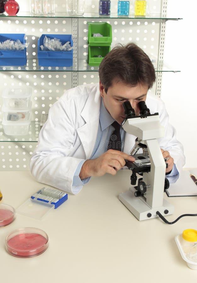 Wissenschaftler, der Mikroskop im Labor verwendet stockfoto