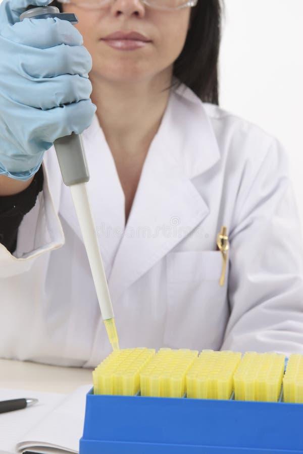 Wissenschaftler, der Pipette verwendet lizenzfreie stockbilder
