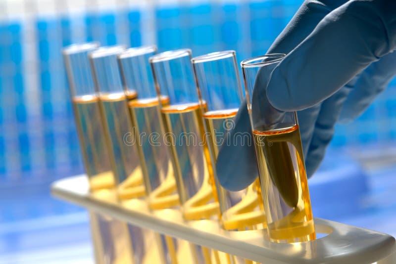 Wissenschaftler-Hand auf Reagenzglas lizenzfreies stockbild