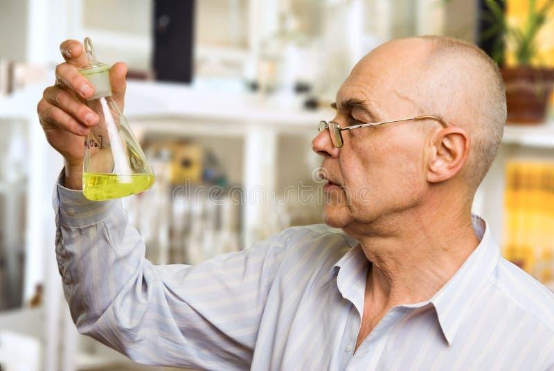 Wissenschaftler im chemischen Labor lizenzfreie stockfotos