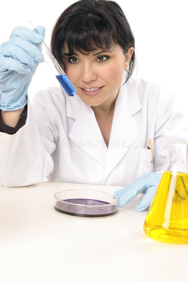 Wissenschaftler im Forschungslabor lizenzfreies stockbild