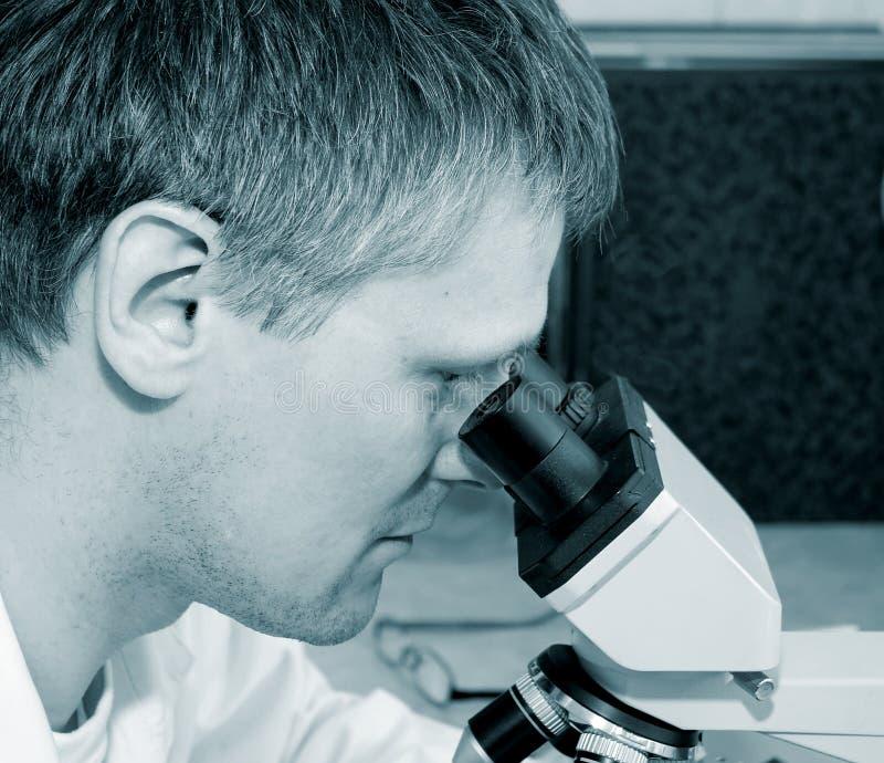Wissenschaftler im Labor stockbilder