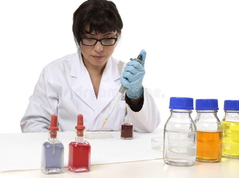 Wissenschaftler im Labor stockbild