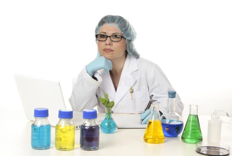 Wissenschaftler im Labor lizenzfreies stockfoto