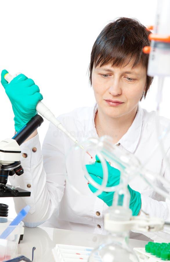 Wissenschaftlerarbeiten stockbild