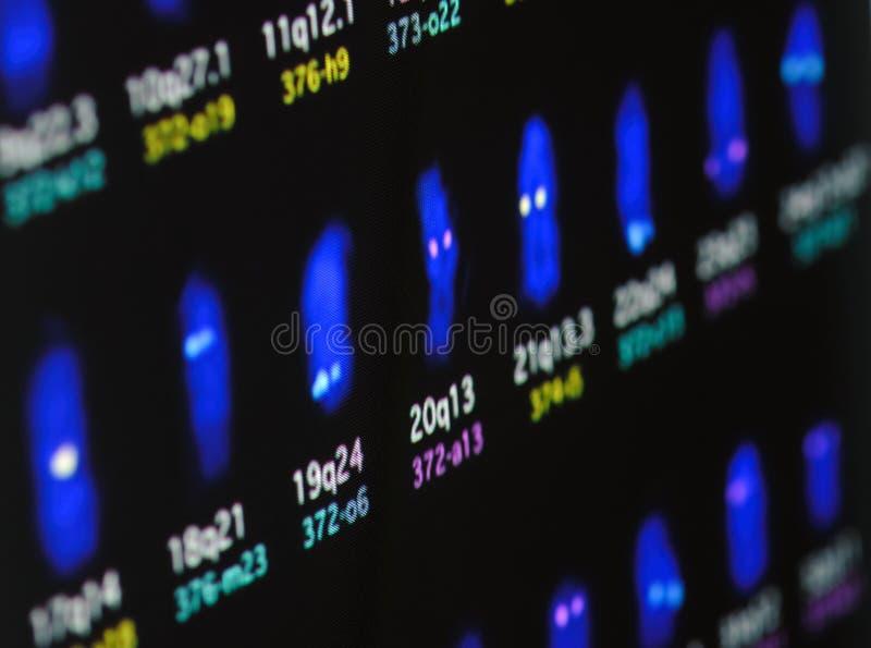 Wissenschaftsforschung lizenzfreie stockfotos