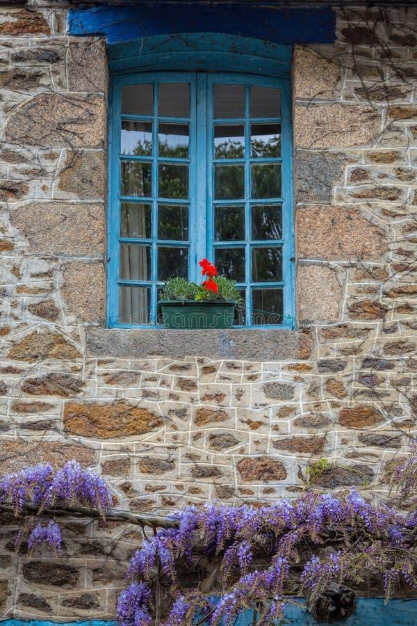 Wisteria σε έναν τοίχο εξοχικών σπιτιών στην αγροτική Γαλλία στοκ εικόνα