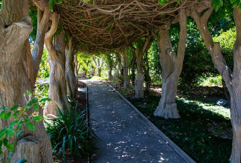Wisteria Garden Arbor. A shady wisteria arbor provides shelter for a garden pathway stock photography