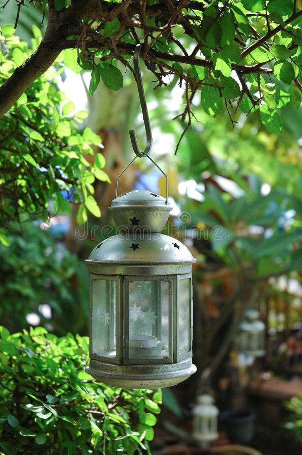 Wisząca lampa w ogródzie fotografia stock
