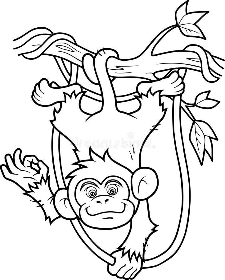wiszący małpi drzewo royalty ilustracja