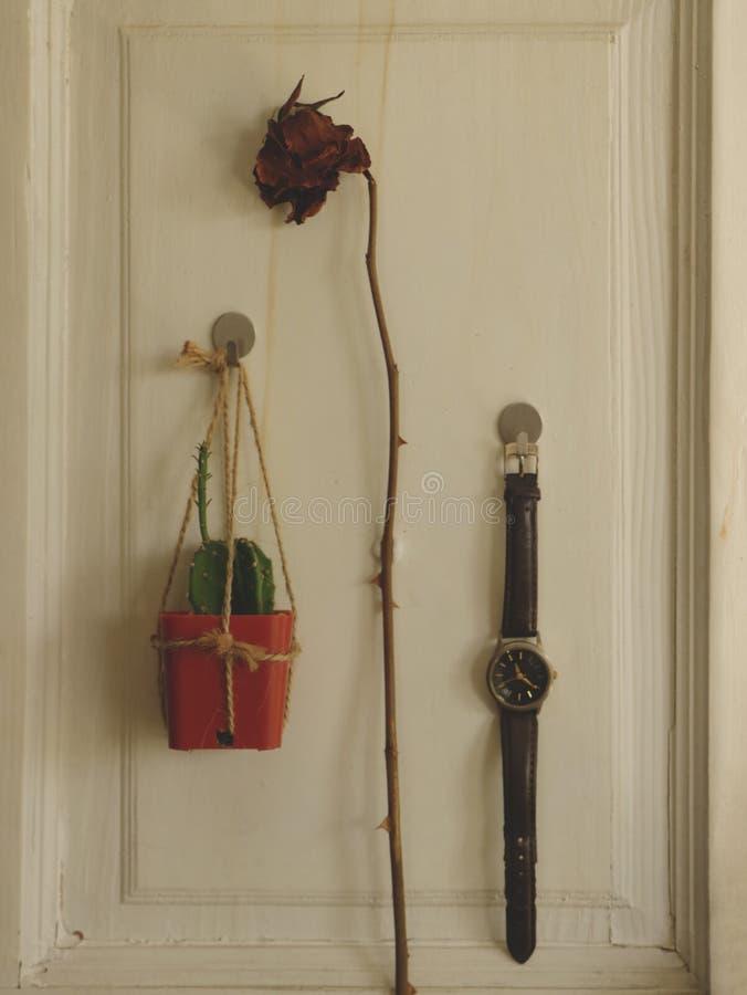 Wiszący Mini kaktus, Suszy Różanego i rocznika Rzemiennego zegarek na Białym Drewnianym drzwi obrazy stock