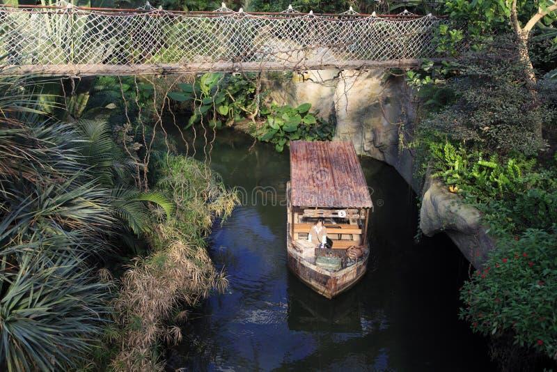 Wiszący most w tropikalnym lesie deszczowym zdjęcie stock