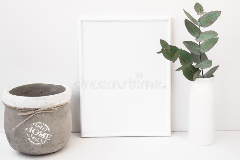 Wit achtergrondkadermodel, groene eucalyptus in ceramische vaas, cementpot, gestileerd beeld royalty-vrije stock afbeelding