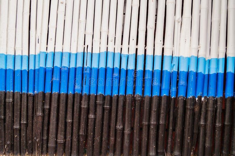 Wit bamboe stock afbeelding