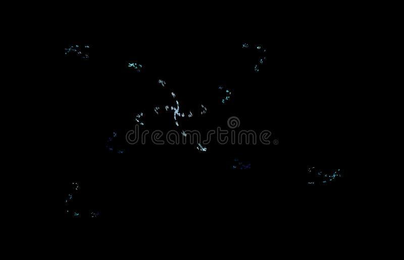 Wit blauw fractal patroon op zwarte achtergrond Digitaal art het 3d teruggeven Computer geproduceerd beeld vector illustratie
