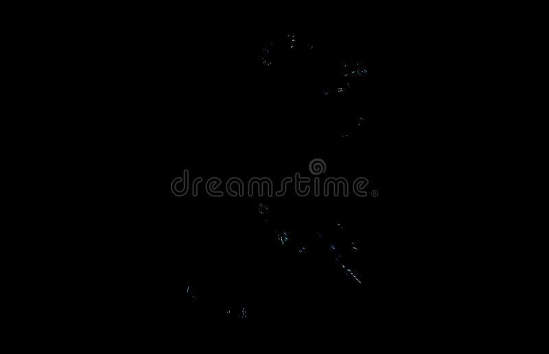 Wit blauw fractal patroon op zwarte achtergrond Digitaal art het 3d teruggeven Computer geproduceerd beeld royalty-vrije illustratie