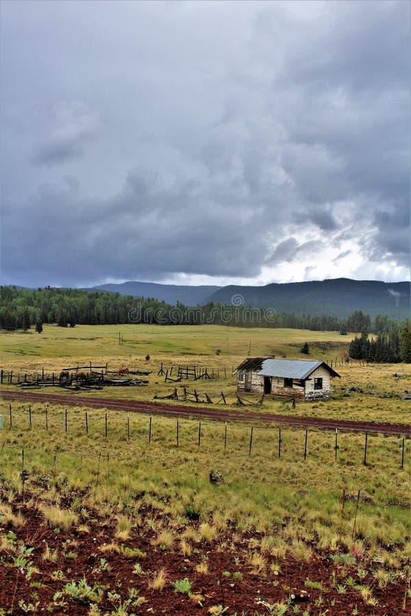 Wit de Reservelandschap van Bergenapache, Arizona, Verenigde Staten stock afbeeldingen