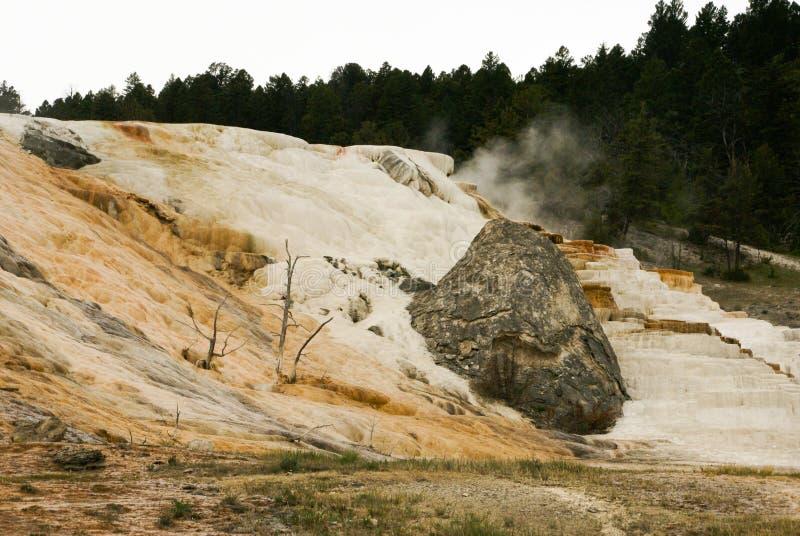 Wit en tan terrassen met een grote grijze rots bij de Mammoet Hete Lentes in het Nationale Park van Yellowstone stock foto