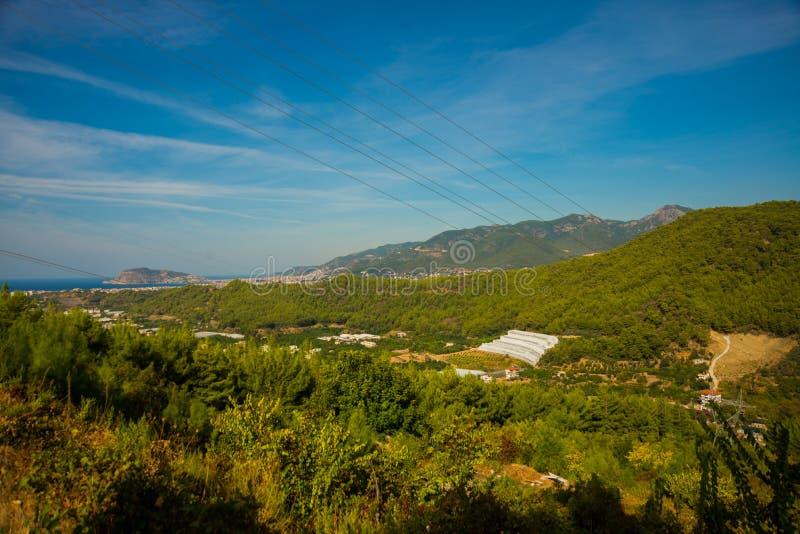 Wit groen huis op blauwe hemelachtergrond Installatiesgewas in serre Gesloten rechthoekige serre hoogste mening Alanya, Turkije stock foto's