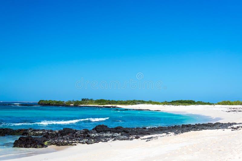 Wit het Zandstrand van de Galapagos royalty-vrije stock foto