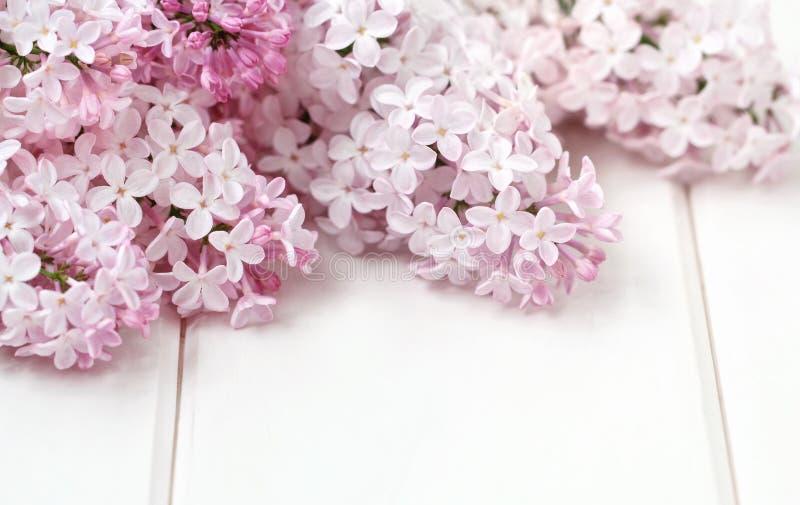 Wit Lilac Bloemenboeket stock foto's