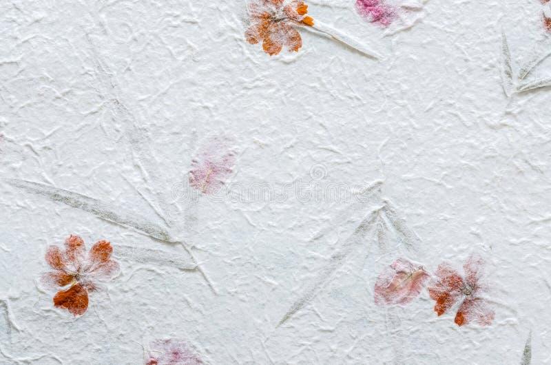 Wit moerbeiboomdocument met bloemblaadje en bladtextuurachtergrond stock afbeeldingen