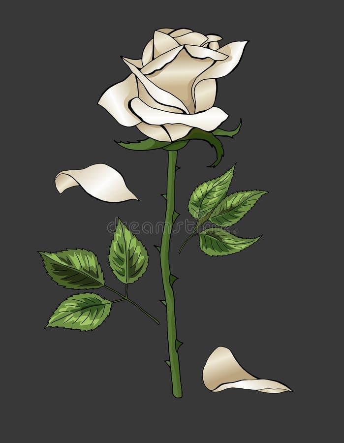Wit nam elegante enige bloem op donkergrijs vectormalplaatje als achtergrond toe vector illustratie