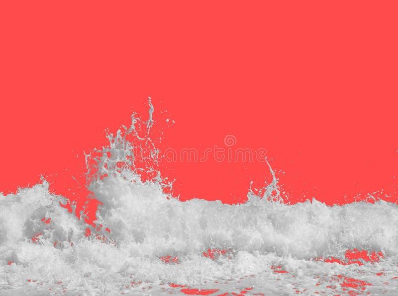 Wit overzees die schuim op een heldere roze achtergrond, het concept wordt geïsoleerd de zomervakanties stock foto's
