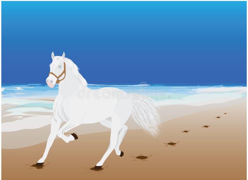Wit paard royalty-vrije illustratie