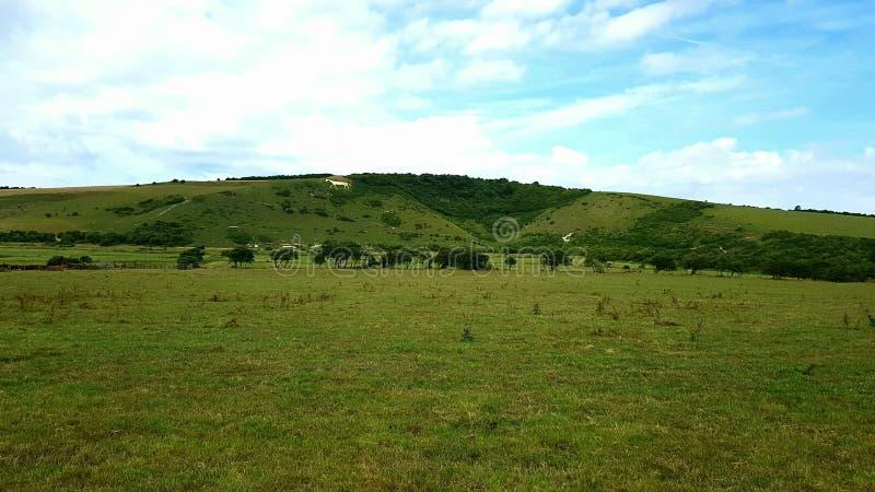 Wit paard van dorpLitlingtonin theCuckmerevalleiinâOost-Sussex, Engeland,  stock afbeeldingen